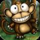 疯狂的猴子安卓版1.36