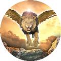 终极狮鹫模拟器中文