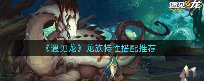 遇见龙龙族特性怎么搭配 龙族特性搭配推荐